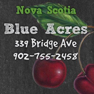 Blue Acres 339 Bridge Ave