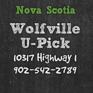 Wolfville U-Pick